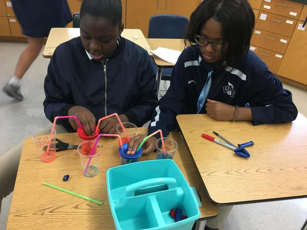 Students build models to answer questions in WFMS science classes